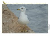 Lost Seagull Carry-all Pouch