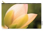 Lotus 1270 Carry-all Pouch