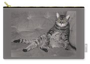 Lounge Cat Carry-all Pouch