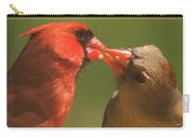 Love Is In The Air Cardinals Square Carry-all Pouch