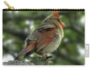 Lovely Female Cardinal Carry-all Pouch