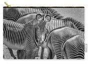 Lovely Stripes  7589bw Carry-all Pouch