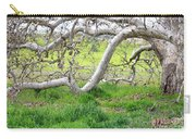 Low Branches On Sycamore Tree Carry-all Pouch