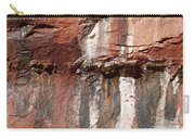 Lower Emerald Pool Rock-zion National Park Carry-all Pouch