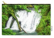 Lower Falls 4 Carry-all Pouch