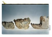 Lower Jawbones Carry-all Pouch