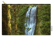 Lower Multanomah Falls, Oregon Carry-all Pouch