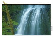Lower South Falls Carry-all Pouch