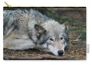 Lying In Wait Carry-all Pouch
