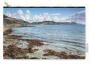 Lyme Regis Seascape 5 - October Carry-all Pouch