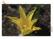 Mackinac Island Flowers 10663 Carry-all Pouch