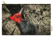 Magellanic Woodpecker - Patagonia Carry-all Pouch