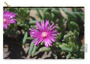 Magenta Purple Desert Moss Rose Carry-all Pouch