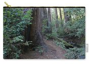 Magical Path Through The Redwoods On Mount Tamalpais Carry-all Pouch