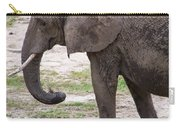 Majestic Elephant  Carry-all Pouch