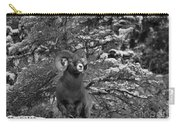 Majestic In Jasper Black And White Carry-all Pouch