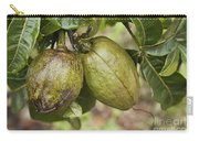 Malabar Chestnuts Carry-all Pouch