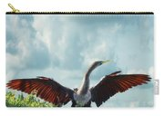 Male American Anhinga  Carry-all Pouch