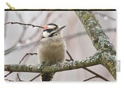 Male Downey Woodpecker Carry-all Pouch