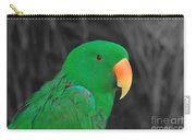 Male Eclectus Carry-all Pouch