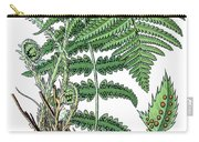 male fern, Dryopteris filix-mas Carry-all Pouch