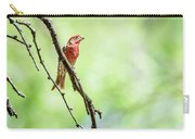 Male House Finch Out On A Limb Carry-all Pouch