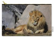 Male Lion Resting In The Warm Sunshine Carry-all Pouch