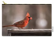 Male Northern Cardinal Winter New Jersey  Carry-all Pouch