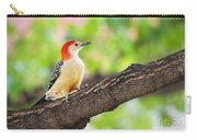 Male Red-bellied Woodpecker Carry-all Pouch