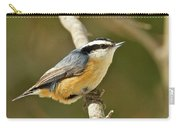 Male Red Breasted Nuthatch 2151 Carry-all Pouch