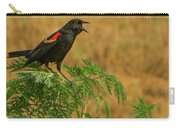 Male Red-winged Blackbird Singing Carry-all Pouch