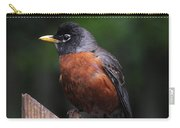 Male Robin Carry-all Pouch