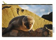 Malibu California Baby Sea Lion Carry-all Pouch