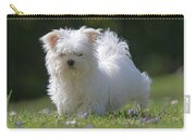 Maltese And Daisy Carry-all Pouch
