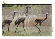 Mama And Two Juvenile Sandhill Cranes Carry-all Pouch