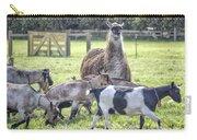 Mama Llama Carry-all Pouch
