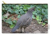 Mama Quail Profile With Ivy Carry-all Pouch