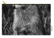 Mama Raccoon Carry-all Pouch