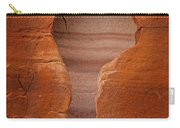 Man In Rock Carry-all Pouch by Kelley King