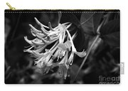 Mandarin Honeysuckle Vine 1 Black And White Carry-all Pouch