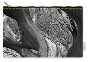 Manzanita Black And White Carry-all Pouch
