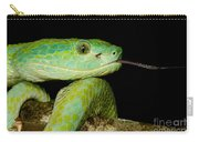 Marchs Palm Pitviper Carry-all Pouch