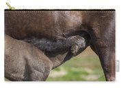 Mare And Foal, Icelandicelandic Carry-all Pouch