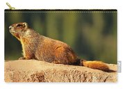 Marmot Life Carry-all Pouch