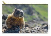 Marmot On The Ridge Carry-all Pouch