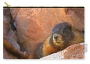 Marmot On The Rocks Carry-all Pouch