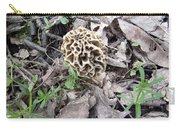 May Morel Mushroom Carry-all Pouch