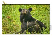 Meadow Itch Bear Carry-all Pouch