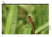Meadowhawk Dragonfly Carry-all Pouch