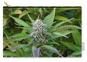 Medicinal Marijuana Growing Carry-all Pouch